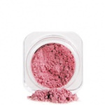 Pudra pulbere stralucitoare Hemel Beauty Star Dust Loose Powder